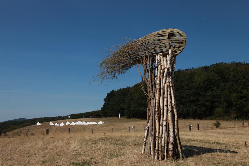 Cloud Tree / Foto: Kathrin Schik