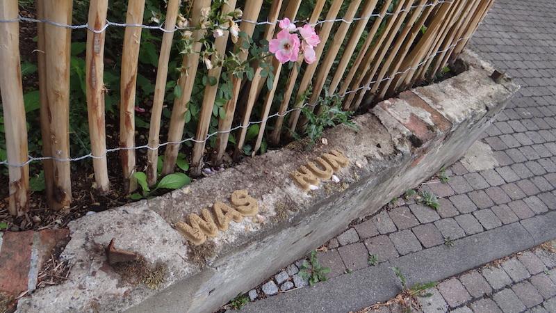was nun / Foto: Raphaela Kula