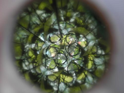 Fruits / Perspectives / Foto: Karin Franzisky