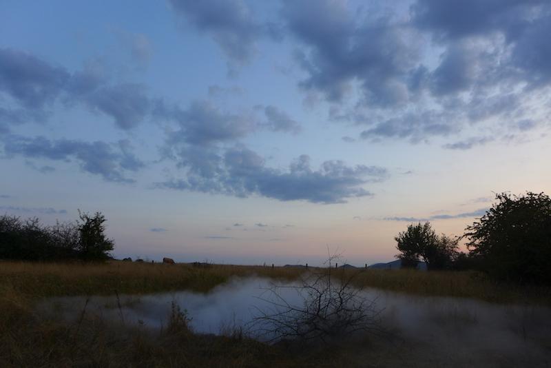Cloud-Mead \ Nebel-Aue / Foto: Winfried Junker-Schönfelder