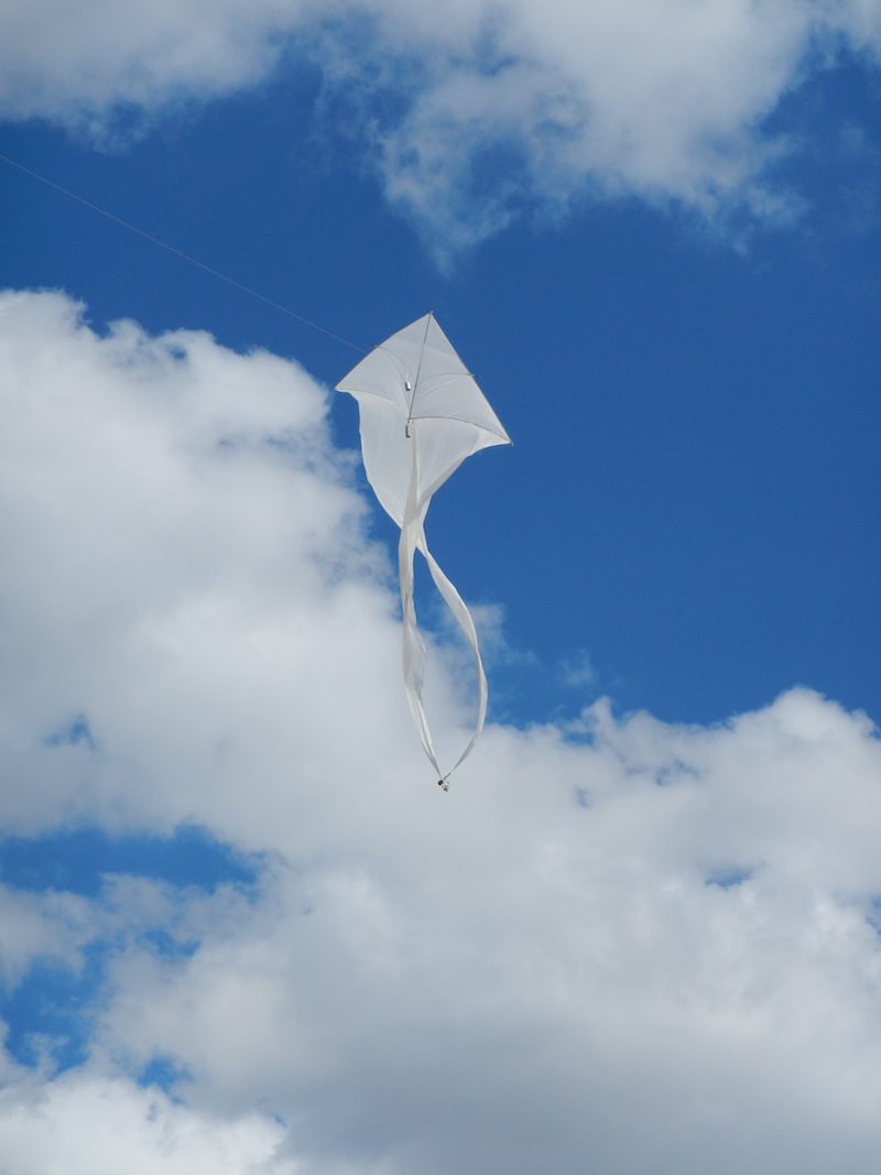 Musical Kites : Sounds From The Clouds / Foto: Wilfried Krauss