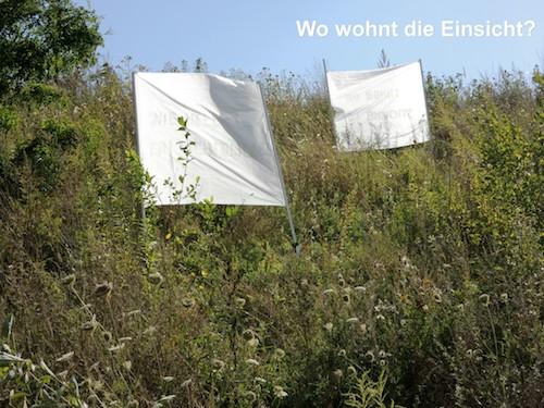 Die Antwort weiß nur der Wind 1-8 / Foto: Menkel