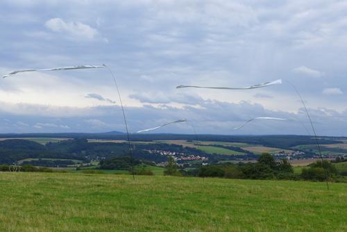 Silberstreifen am Horizont: Foto: Winfried Junker- Schönfelder