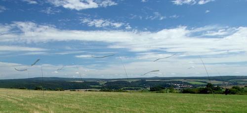 Silberstreifen am Horizont / Foto: Anke Sauer