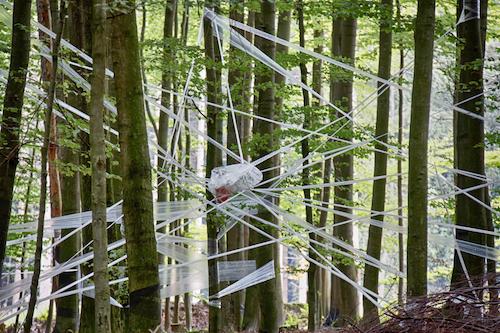 Klang der Stille Foto: Kerstin Thon