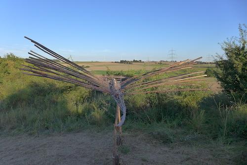 Dragon-fly / Foto: Reta Reinl